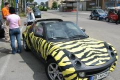 Bodensee Smarttour 2004